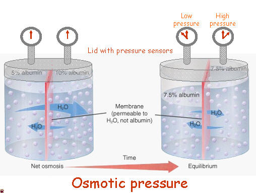 Osmotic Pressure Cell