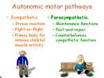 autonomic pathways