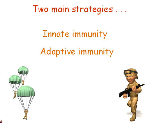 immune strategies
