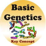 Introduction to Human Genetics badge